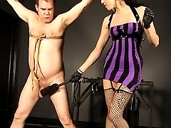 Dahlia strings up her submissive in preparation for him to entertain her.  Dahlia is clearly in the mood to just mess with a slave, as she giggles and laughs every time he yells.  She puts a stretcher and spiky clamp on his balls to warm him up.  She then pulls out two pairs of forceps to finds out were she gets the most reaction from her play toy.  Dahlia tries different whips, paddles, and other devices, as well as making her slave hold a paddle in a precarious position to see if he will drop it.