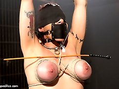 Welcome the always sexy Annika back to Whipped Ass! This time around Annika suffers at the whim of the wickedly sexy Maitresse Madeline. Bound standing tall with her tits wrapped in tight bondage Madeline seduces and dominates Annika reducing her to nothing but a slutty bondage toy. She takes cane mark after cane mark, endures an evil back bend position while licking and worshiping Madeline's perfect asshole. She's spread open, bound with leather straps, ass plugged with a hook tied to her head while she's continually single tailed then invaded deep in her cunt with a dildo until her pussy is left quivering and juicy. For the last position Madeline places her in unforgiving wooded stocks bent over with her hands bound in wooden boxes and strap-on fucked deep in her ass while every orgasm is ripped from her sexy body.