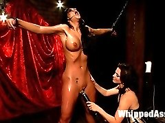 Let's welcome the beautiful and talented Phoenix Marie to WhippedAss.com!  This famous pornstar explores kinky sex and lesbian domination at the hands of gorgeous domme Bobbi Starr. Phoenix hates getting her perfect ass spanked yet submits to it under Bobbi's control. She's chained and whipped, made to worship feet and has her ass stretched to a gape while strap-on fucked!