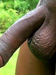 ebony gay big dick