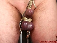 Mina puts jimmy's arms up above his head on a winch and squeezes his pouch that are secured in silicone ball stretching bands. She squeezes them roughly through the tight openings, and then binds them back up again tightly with rough hemp string. She bites his shaft with her perfect white teeth, leaving teeth marks in his schlong. She affixes nipple forceps to his nipples, ties them to his pecker and then places a weight on his ball bondage that she packs with water, making it heavier and heavier. Then she places a vibrator on his tightly bound purple pouch.