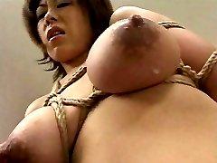 Sexy Lactating Girls