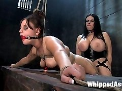 Michelle Brown is an 18 year old college student and a member of Kink.com websites. Sexually aroused by our content, she decided to apply for a modeling position and landed a shoot with Whippedass.  We pair this bondage newbie up with the super busty Daphne Rosen.  Michelle is dominated, forced to orgasm, strap-on fucked and licks pussy for the very first time.