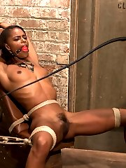 Marie Luv makes her debut on Whipped Ass! Bella Rossi puts this hardbody who's built for sex through her paces and Marie is a pleasure to watch suffer. She's dominated and fucked in an intense lesbian BDSM session with single tail whipping, spanking, pussy licking and strap on anal sex!