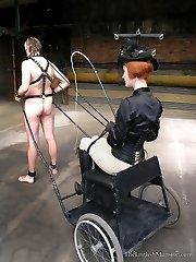 Vintage Pony Carting