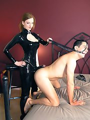 Harnessed For Her Strapon