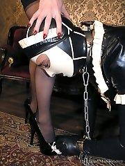 Morrigans Maid