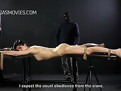 Sluts caned one after the other