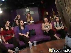 Dancing bear - Conclude her