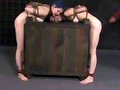 seesaw bondage & discipline