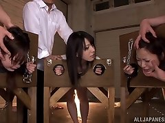 Naughty Asian nubiles Ai Uehara, Ami Tokita and mate in the stockade