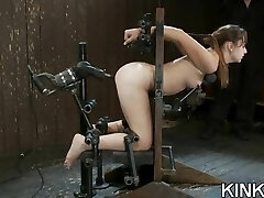 Fighting ladies get punished and ass fucked