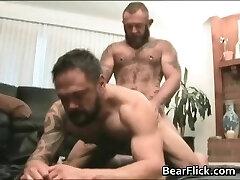 big gay bears porking hardcore doggy