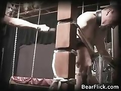 Queer bear policeman sends a painful part3