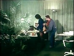 german vintage anal pinch - secretary gets assfucked