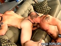 Muscly bear rimmed and rammed