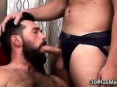 Muscly bears suck hard cocks