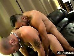 Muscly bear rides gay hunks cock