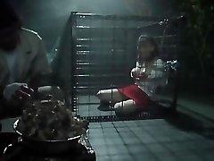 奴隷女教師~色情牝飼育(メモリアル版) 藤田りな VS-379