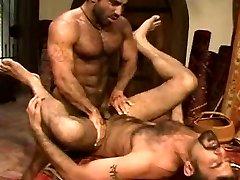 HAIRY MUSCLE Duo PAREJA DE OSOS