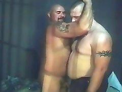 Bears in Jail