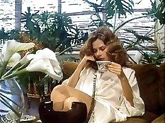 완 채찍 월스트리트(1982)