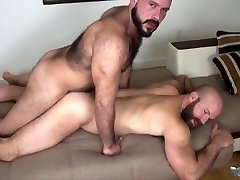two cubs fuck bareback