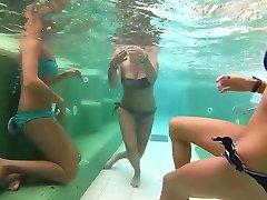 drăguț de a juca cu prietenii subacvatice