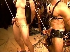 Five fellow voluptuous CBT, BDSM orgy featuring bears and otters. pt 1