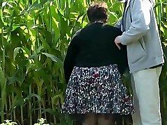 पत्नी उसे गधे के ग्रामीण इलाकों में