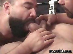Gay bears pumping iron and gargling cock part2