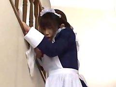 Cute Japanese  Maid