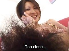 Subtitruota Japonijos mėgėjų puikus krūmas nuogo kūno žymės