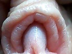 Clitoris close-up