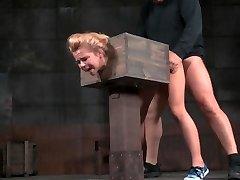 -Z19- AW Bi-atch in a Box