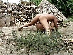 hung stud rozdělí dřeva a dospívající kočička