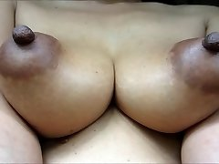 Indian Pointy Mature