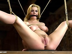 Two for one today on HogTied! These two gorgeous girls are tied, gagged, whipped and made to...