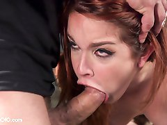 Big asses, red heads, and shaved submissive pussies are the order of the day and luckily the...