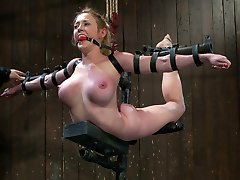 Now this is something you don't see every day, a custom metal suspension piece. This is what happens when ART hits BDSM in the face with a creative stick.