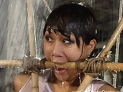 We put Dragonlilly through the bondage paces in this hot update. Her asian skin goes so well...