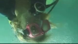 scuba lovemaking underwater