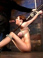 It has been almost a year since Rain DeGrey has done a normal studio shoot with Hogtied. This...