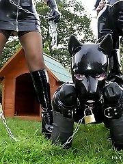 Rubber Puppy