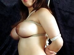 Asian Tiger in Bondage