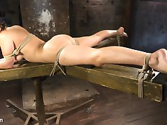 Dani is drop dead fucking gorgeous and loves to be tormented in bondage. She craves the feeling...