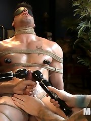 Casey More is back and theres plenty more of him to go around since he became a personal...