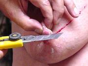 Torturiser Videos