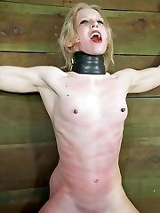 Every girl thinks of the Sybian as her best friend. Or at least they do until they are strapped...
