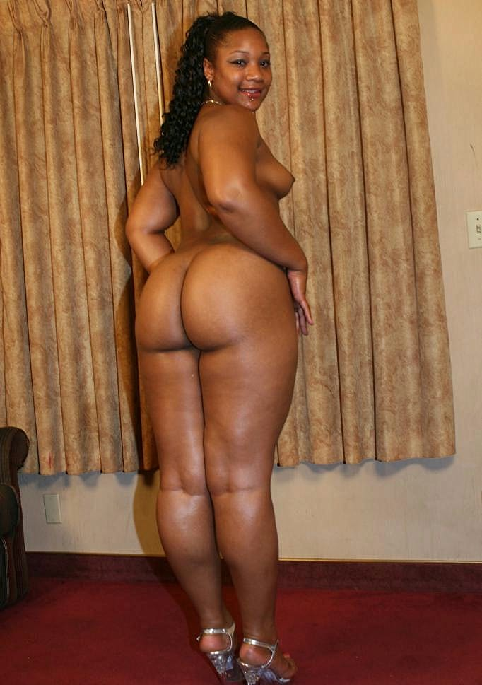 Big Butt Bbw Doggystyle